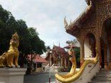 Beseda Zlatuše Knollové – Thajsko